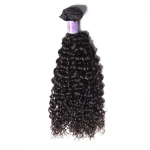 UNice Hair Kysiss Series Hair 4 Bundles Unprocessed Virgin Hair Wholesale Jerry Curly Hair
