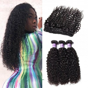 Kysiss Series Jerry Curly 3 Bundles Of Indian Human Virgin Hair With Closure